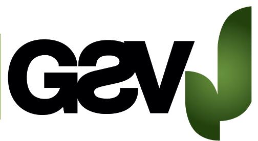GSV - HF - RF